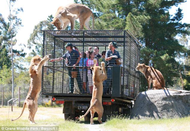 worst zoo